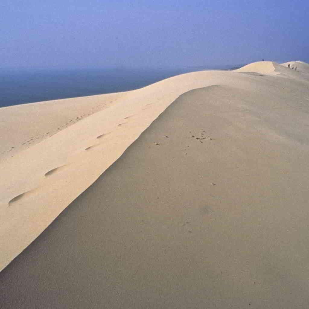 Sandy Dune du Pyla
