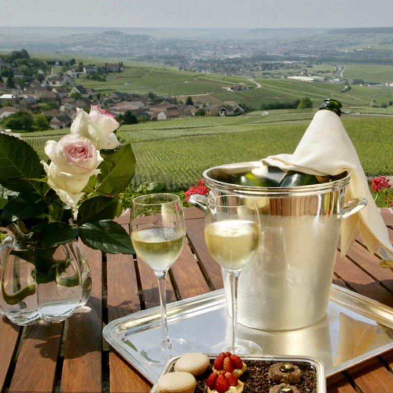 Honeymoon in Champagne vineyards