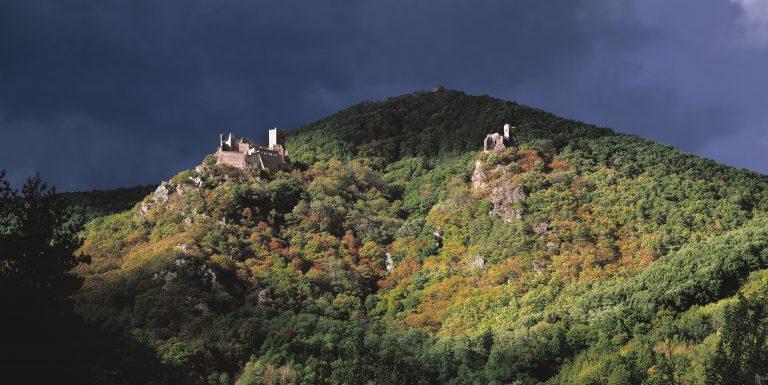 Châteaux de Ribeauvillé