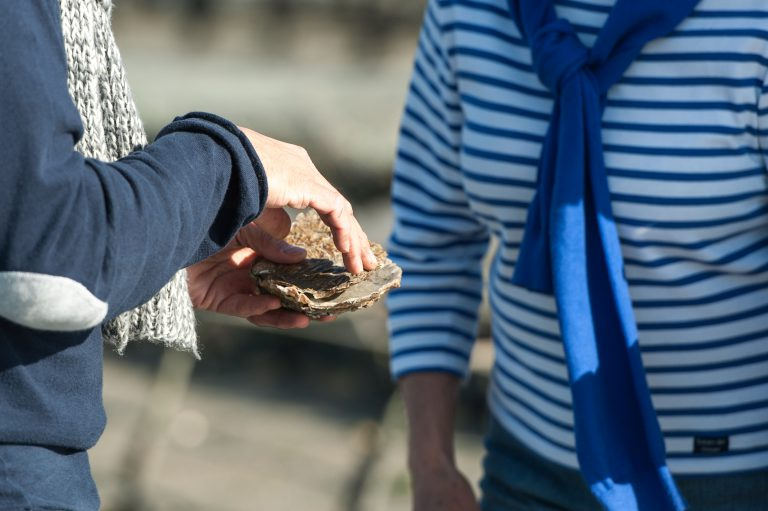Oyster from Cancale