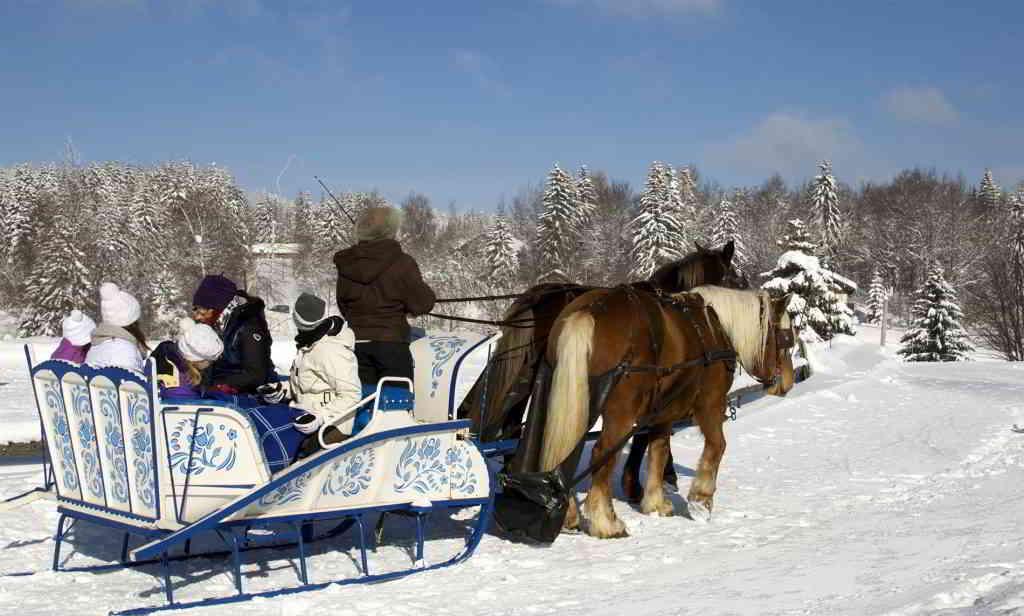 alps la feclaz horse carriage