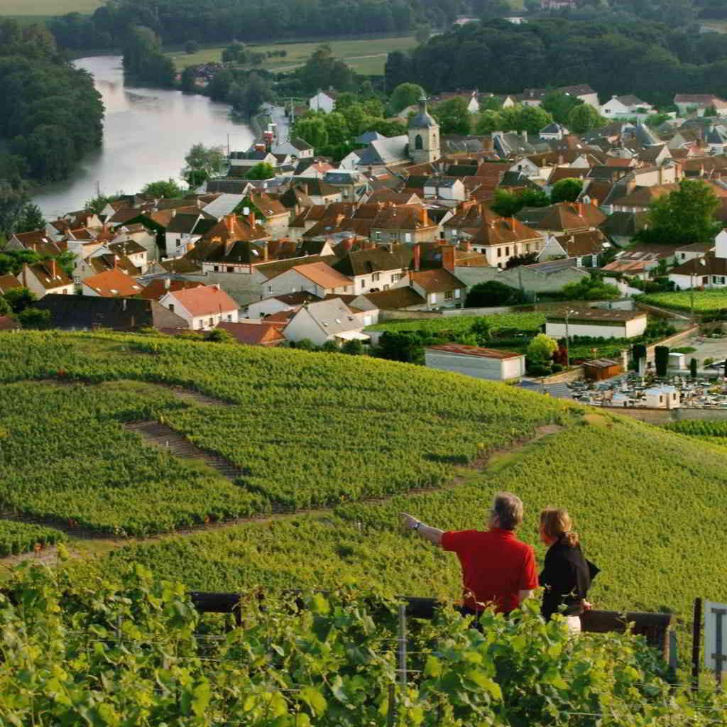 A romantic escapade in the vineyards