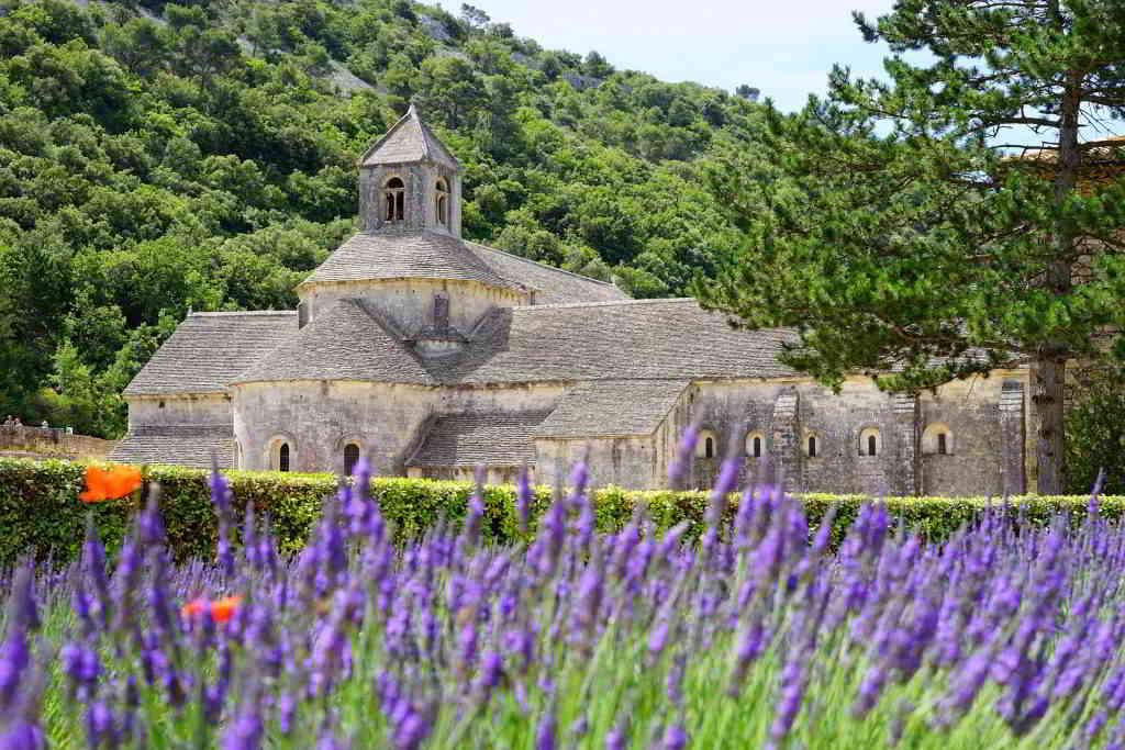 Sénanque Abbaye