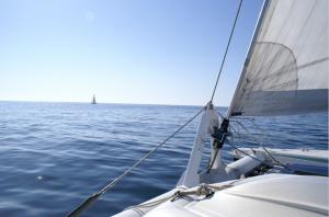 A catamaran sailing in Brittany