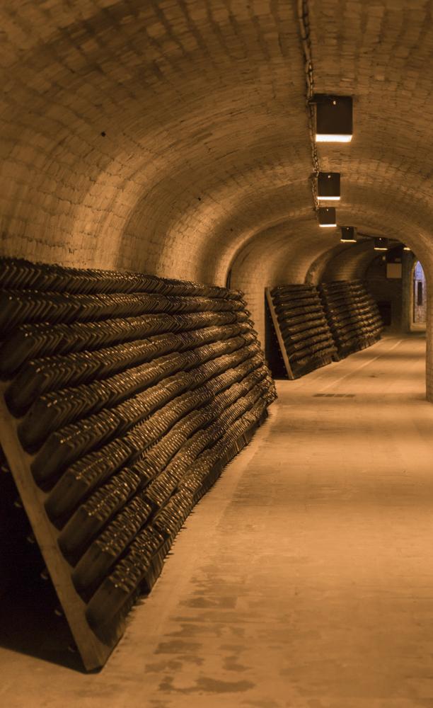 champagne cellar dom perignon