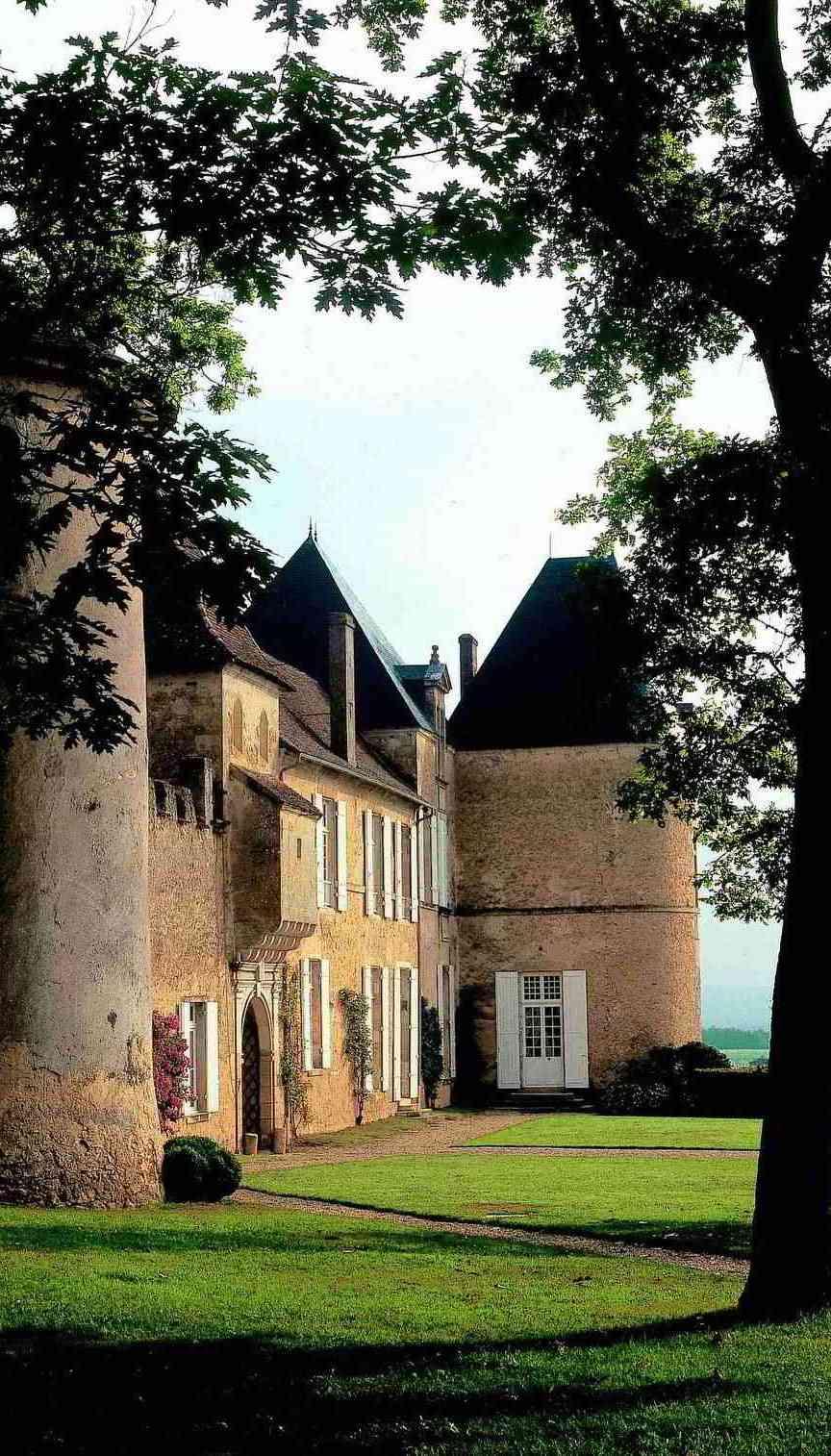 chateau yquem bordeaux wines