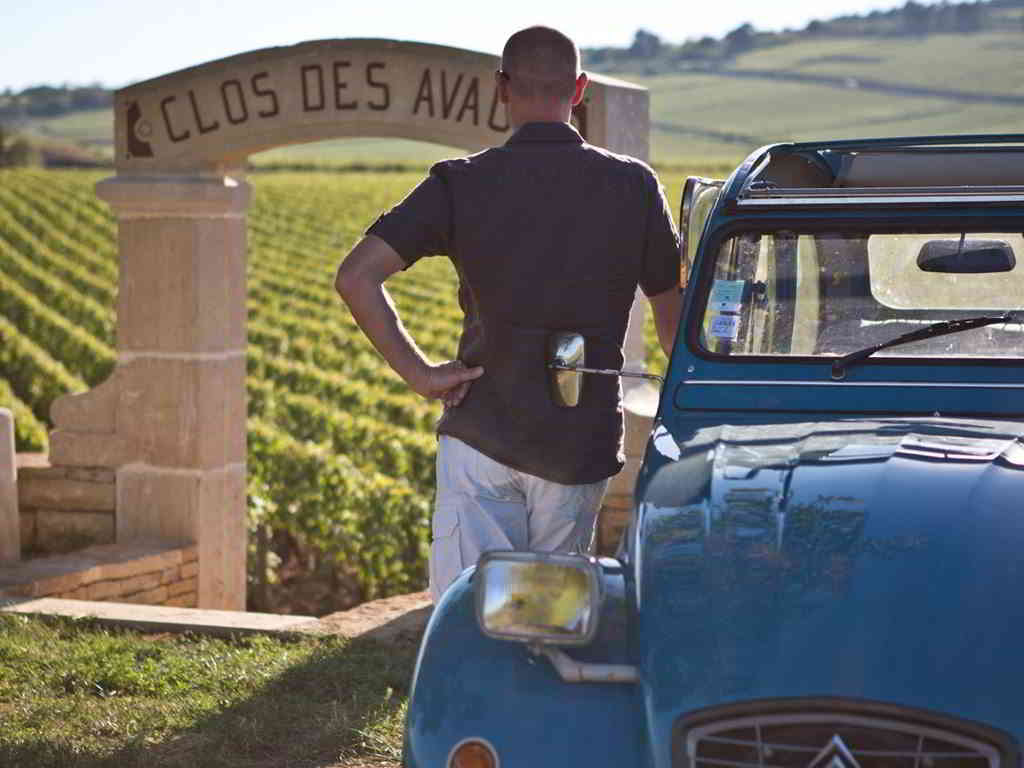 A vintage 2CV stroll in the vines