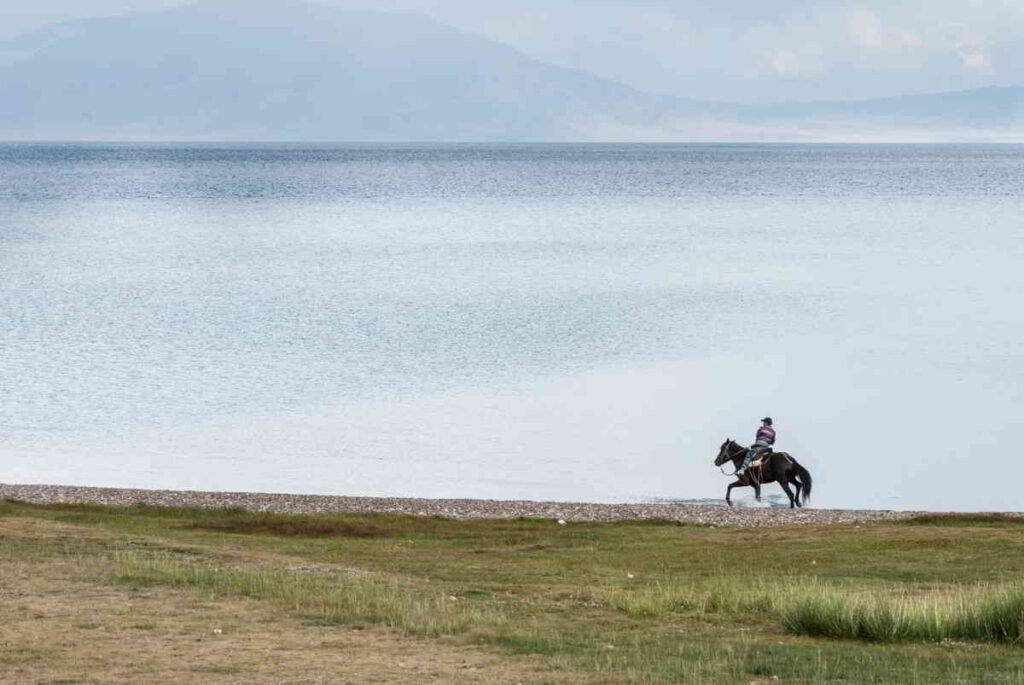 Horse Riding in the Nature