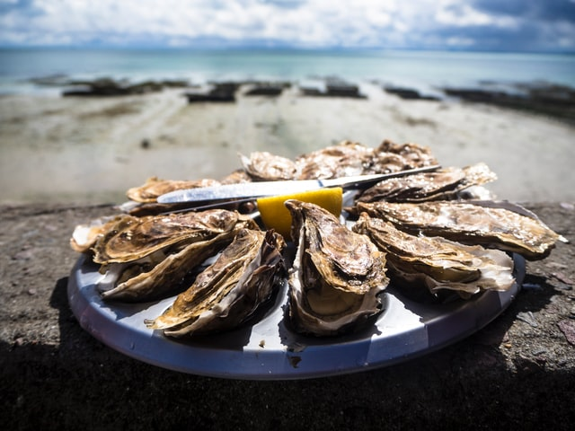 Plate of oyster on a seaside table