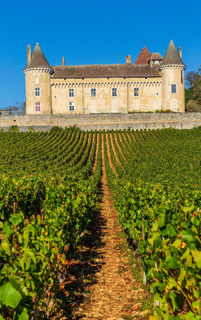 burgundy vineyard chateau rully view