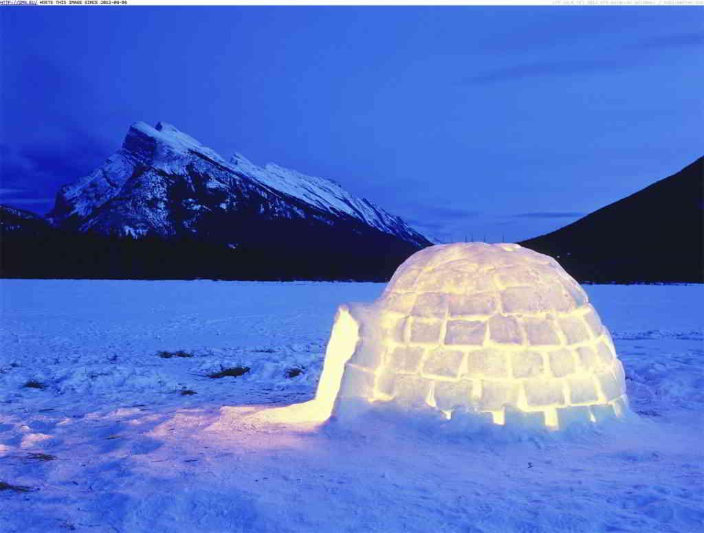 Proposal in an igloo