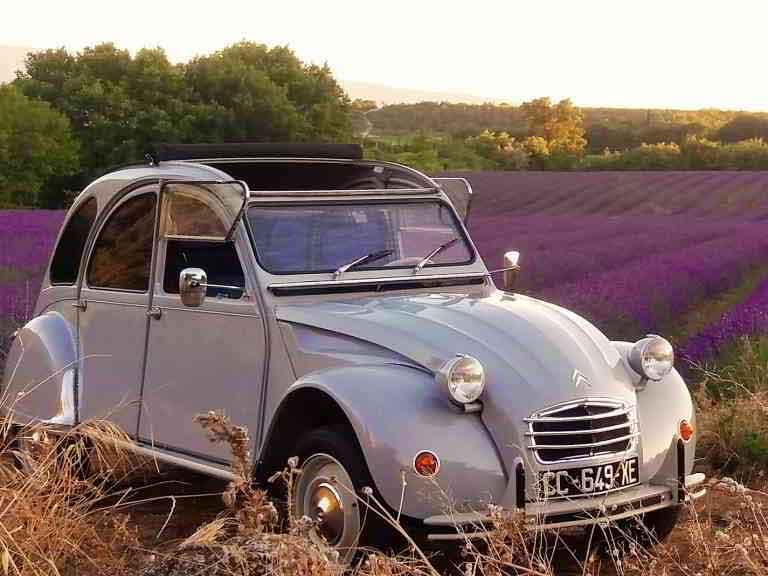 Flagrant Fields in Provence 2cv car vintage