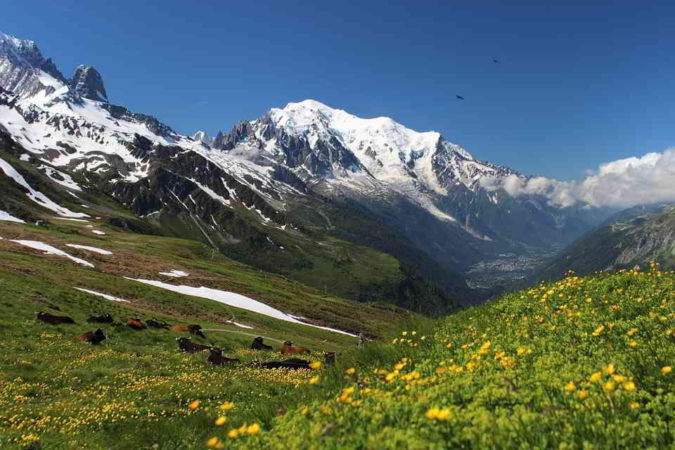 A Hiking Trail Near Le Mont Blanc