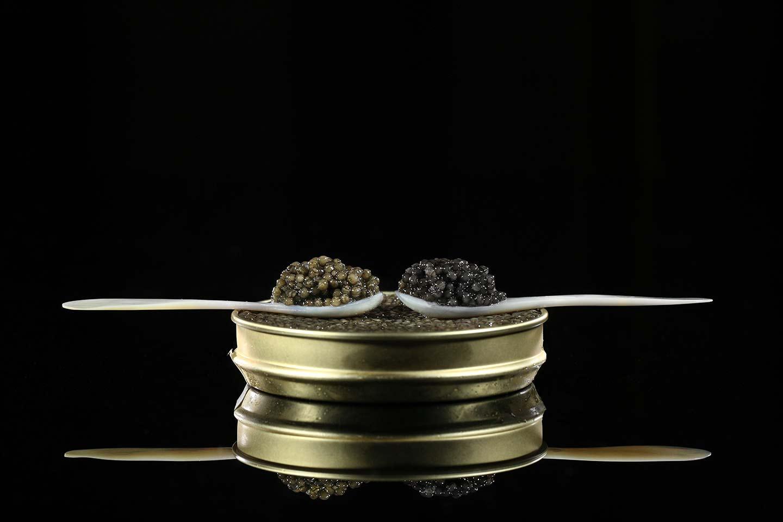 perlenoire caviar noir francais