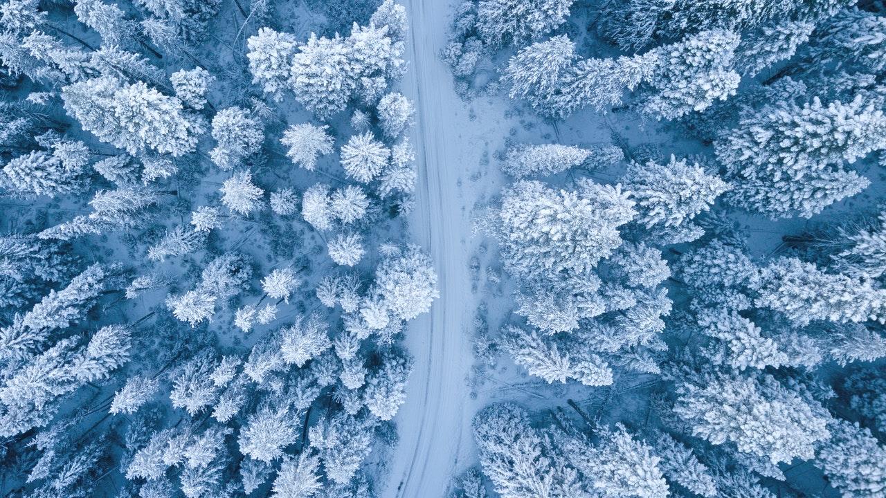 ski snow megeve mountains alps pine trees