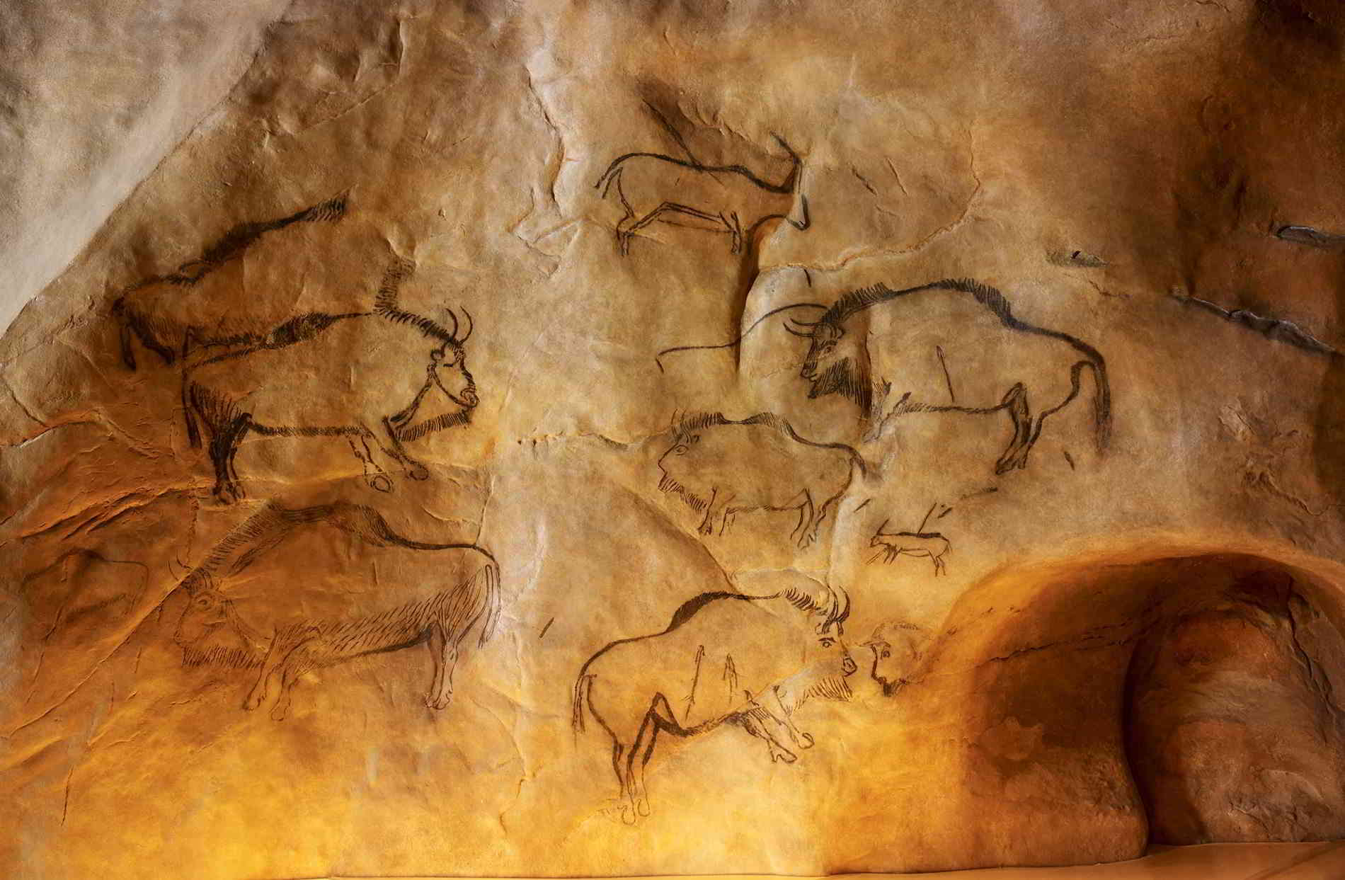 Why to Take a Private Tour of Prehistoric Caves in France
