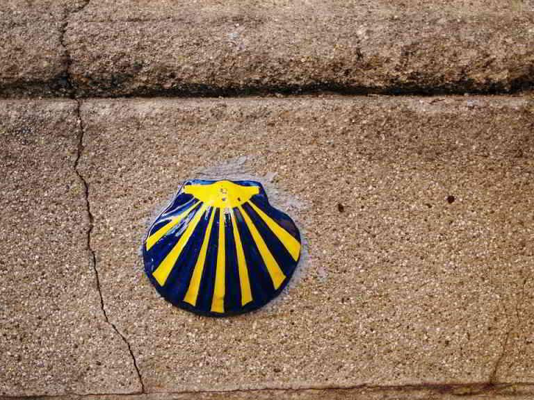 A Shell - Symbol of St Jacques de Compostelle