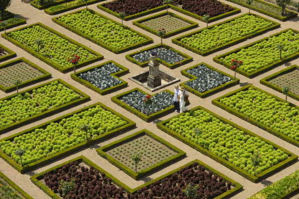 Romantic stroll in Villandry's gardens - villandry JDamase
